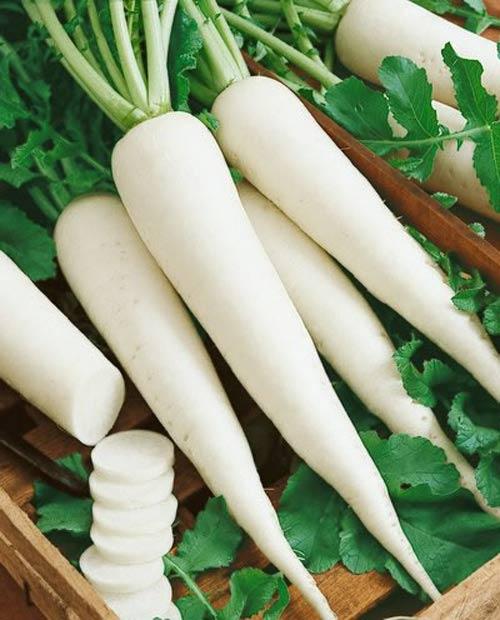 Bí quyết trị nám da bằng củ cải trắng