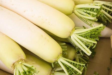 cách trị nám bằng củ cải trắng và rau diếp cá222